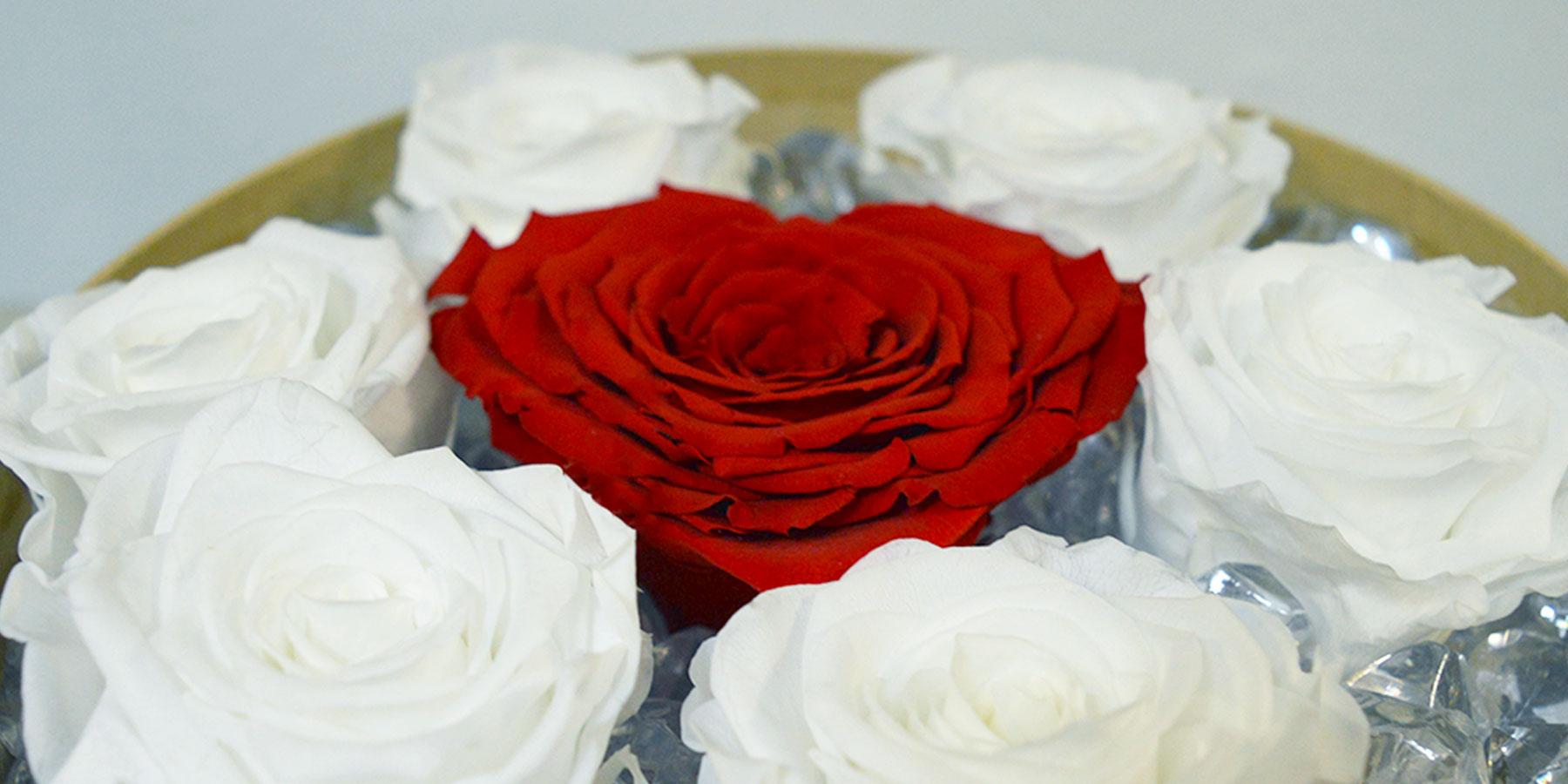 San Valentino si avvicina: regala una rosa eterna